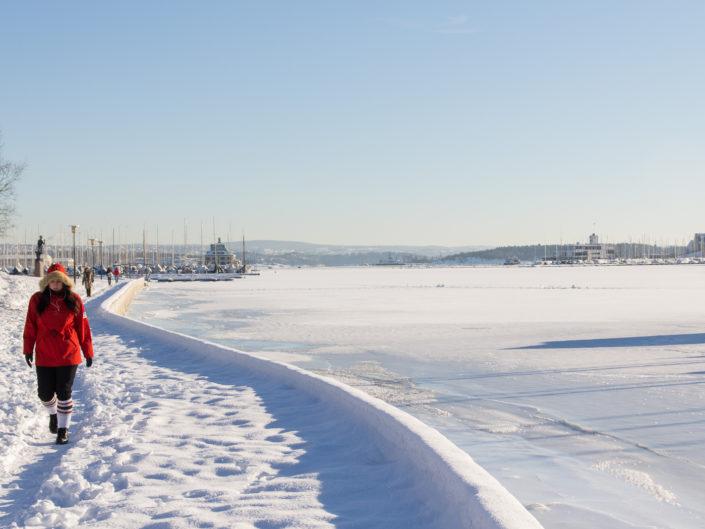Frognerkilen, Oslo (Feb. 13, 2011)