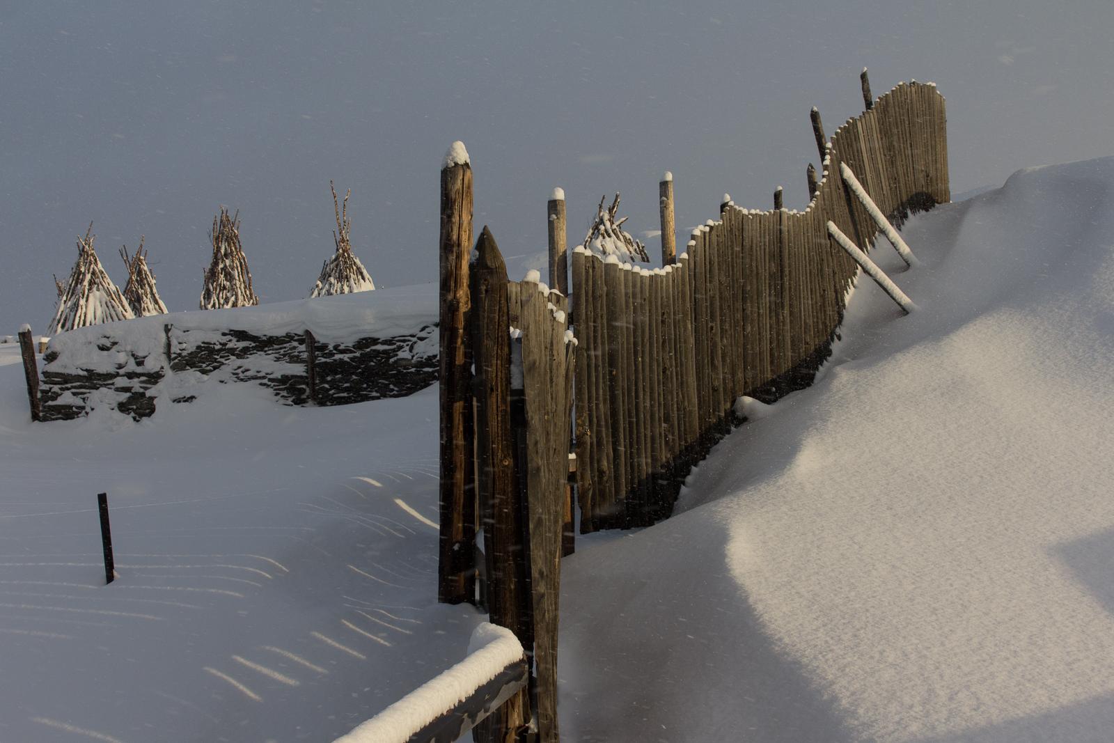 Røros Winter (fences)