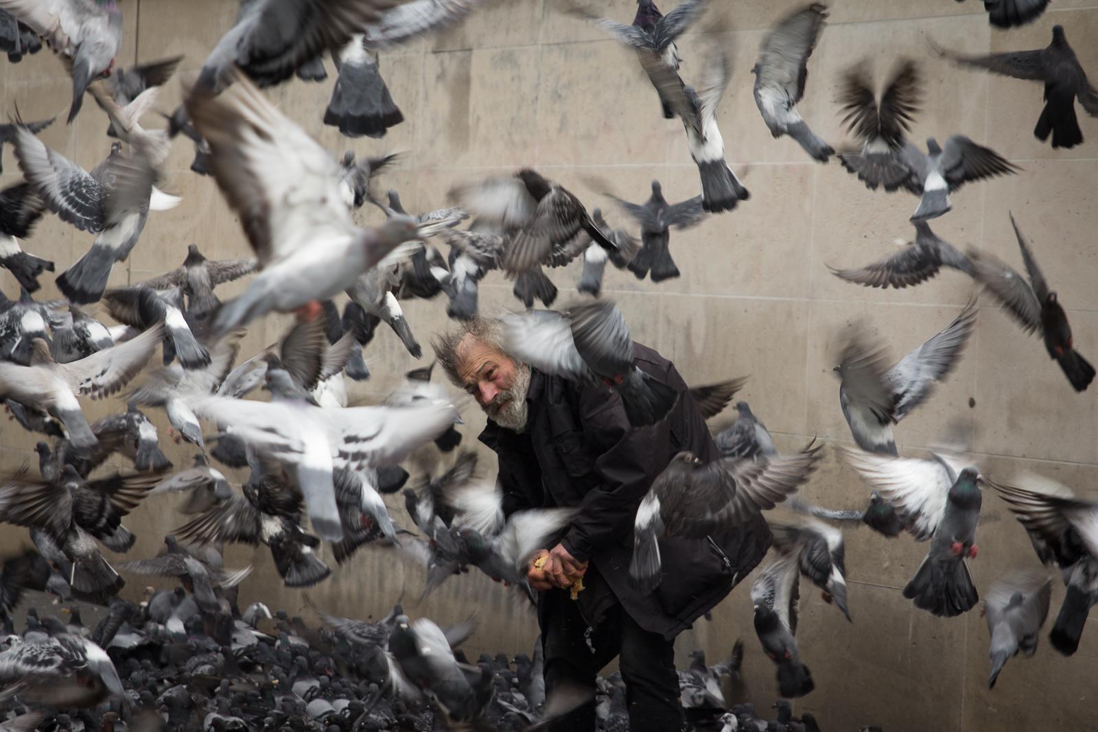 The Bird-Man (Centre Pompidou)