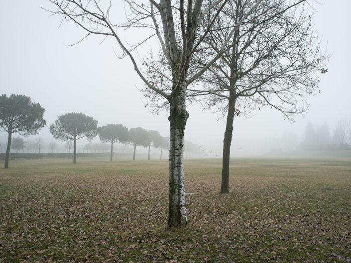 Parco Tedorico, Ravenna - Italy