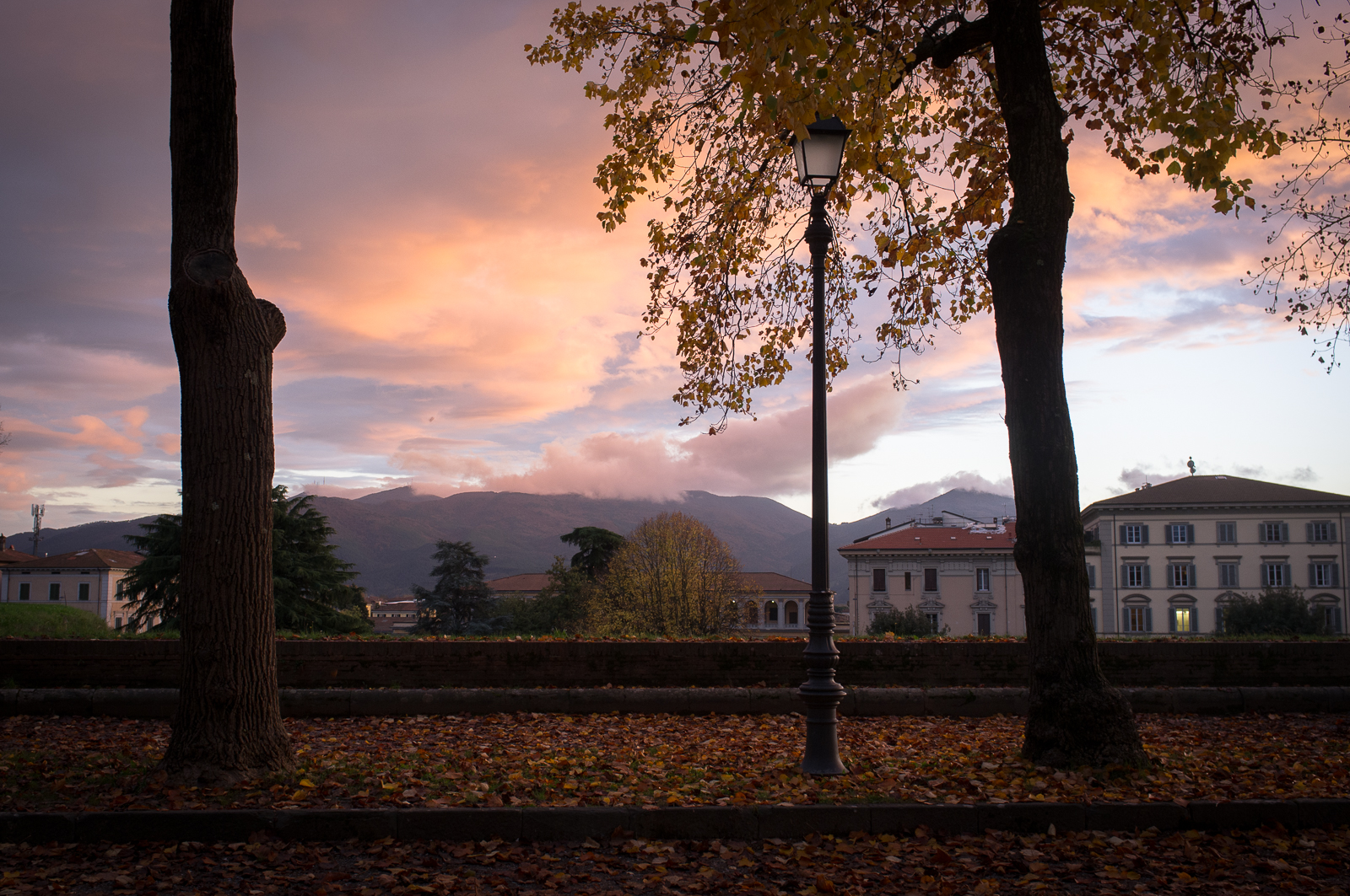 Autumn in Lucca, Tuscany