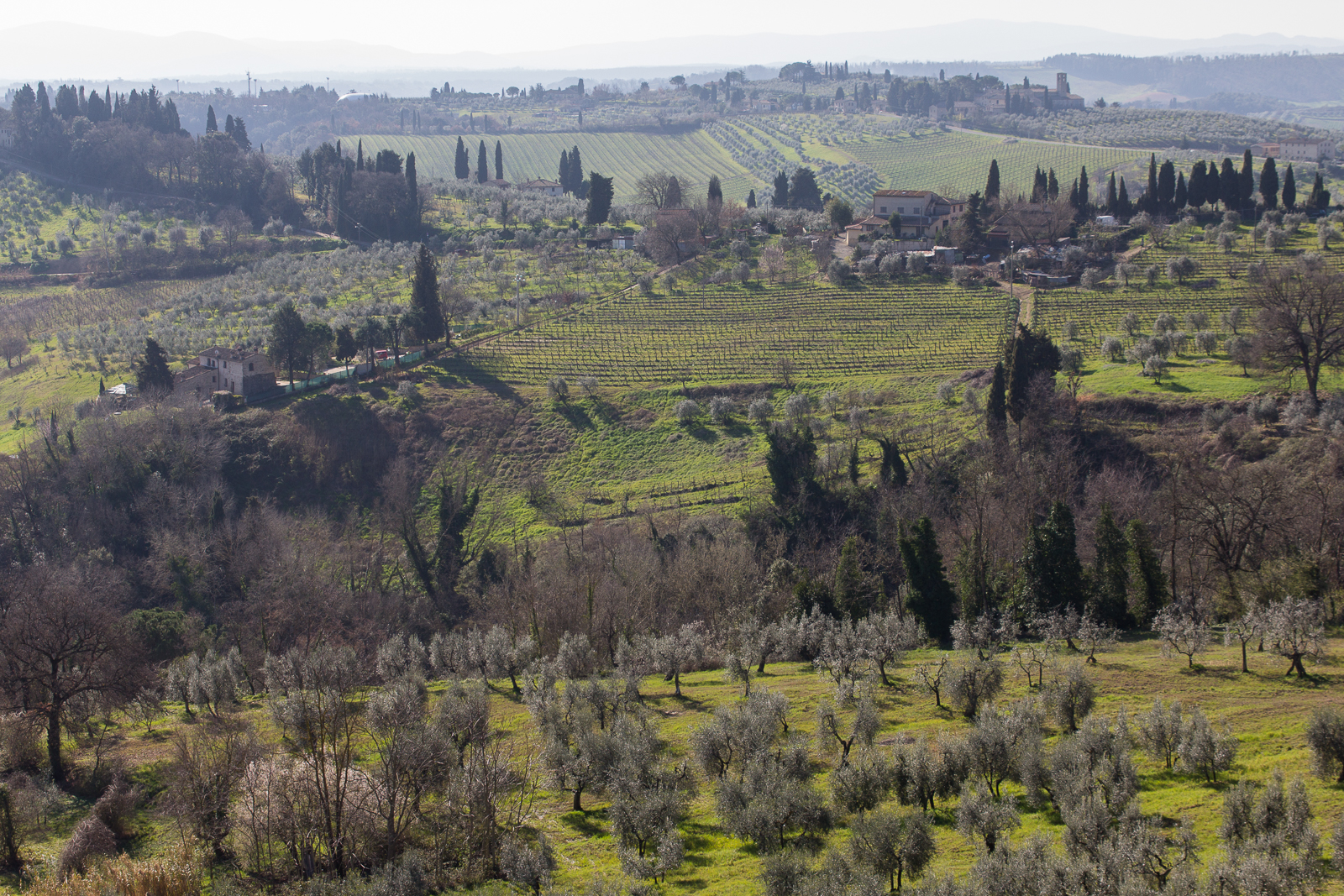 A San Gimignano landscape
