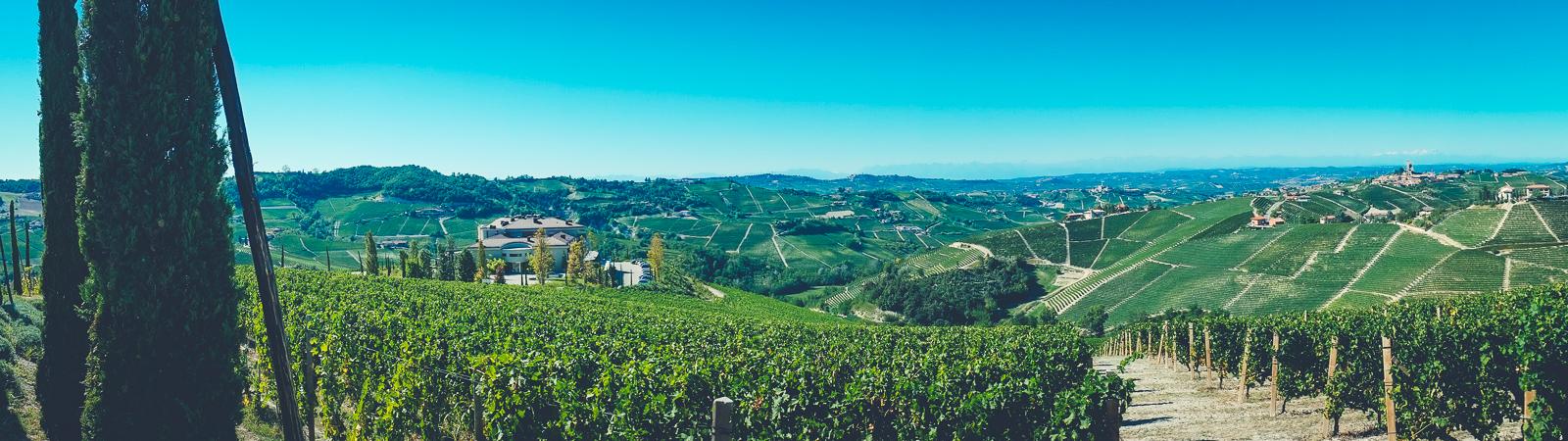 Calosso - Piedmont Panorama