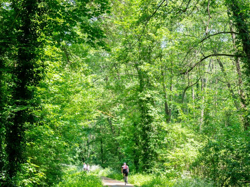 On the Roger Lapébie bicycle path, Bordeaux, Entre-deux-Mers
